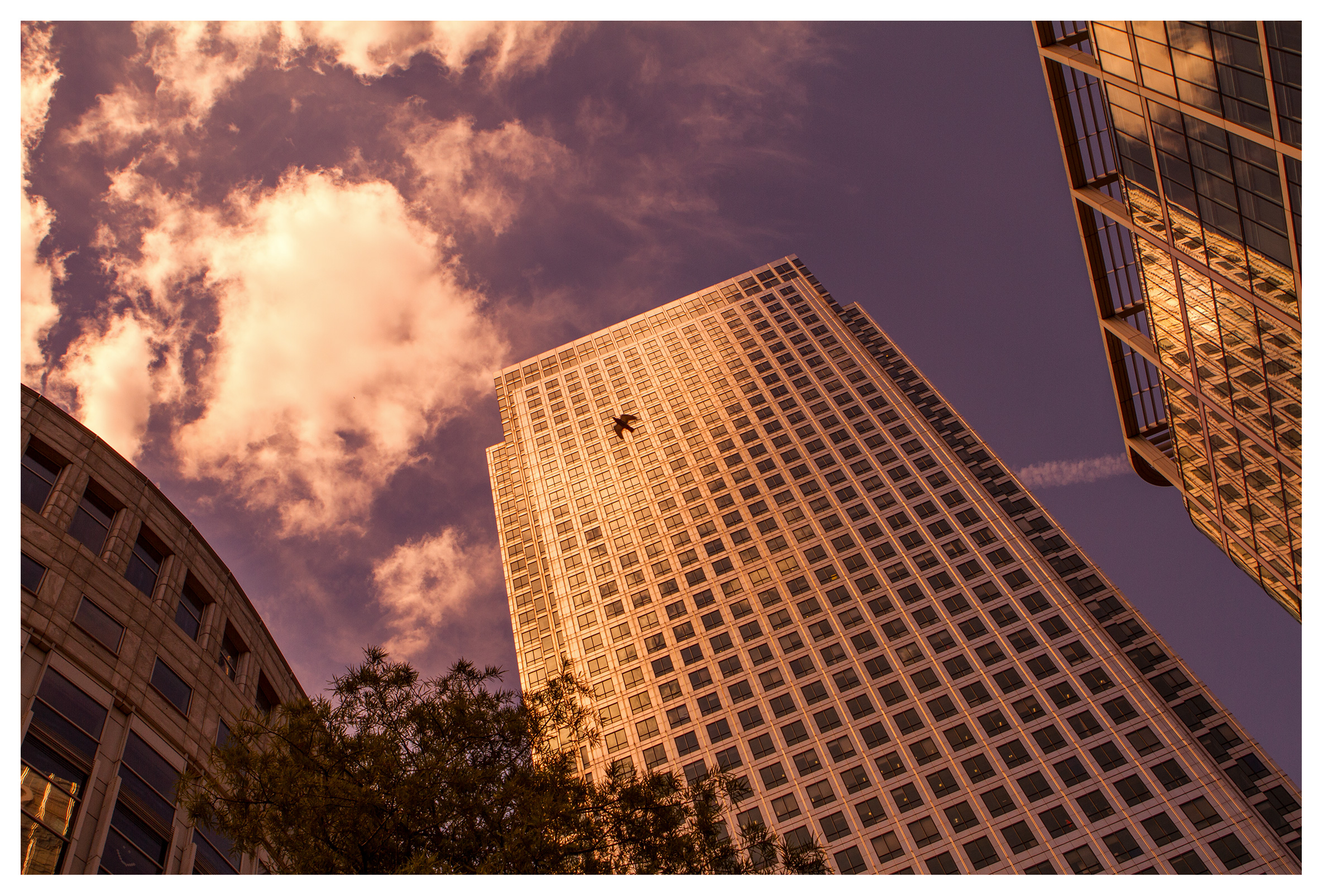 London Architecture, 1 Canada Square, sunset, Canary Wharf, London.